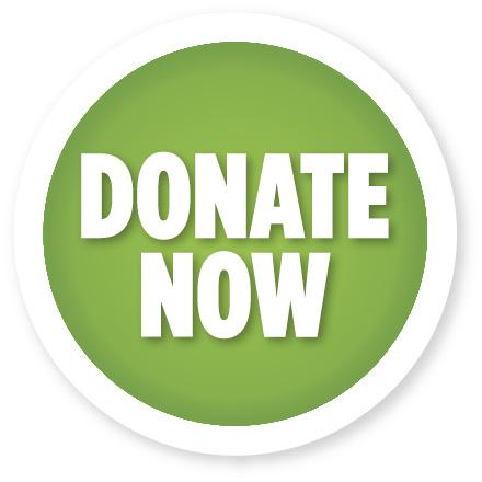 donate-now3